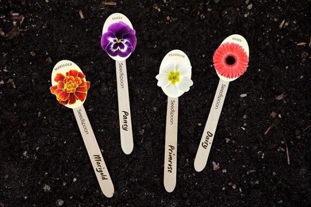 Seedspoon6